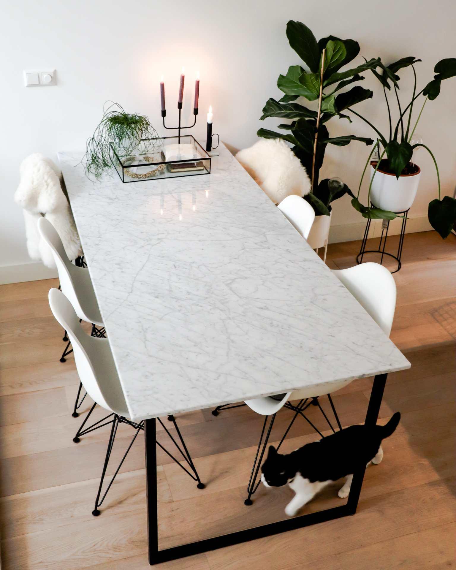 Rectangular Marble Dining Table Bianco Carrara White U Frame Aime Té